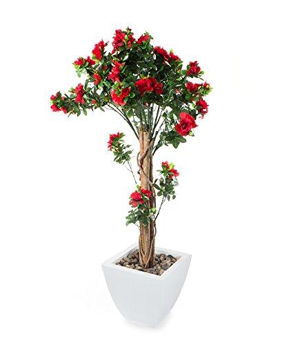 closer-to-nature-flor-de-interior-rododendro-color-rojo