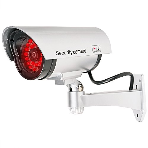 WALI Bullet Dummy Fake Surveillance Security CCTV Dome Camera Indoor Outdoor with 30 Illuminating LED Light + Warning Security Alert Sticker Decals WL-S30-1(Silver), 1 Pack (Outdoor Decals compare prices)