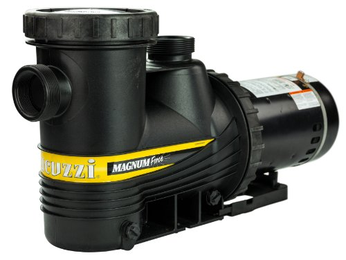 Jacuzzi Magnum Force 2 HP In Ground Swimming Pool Pump