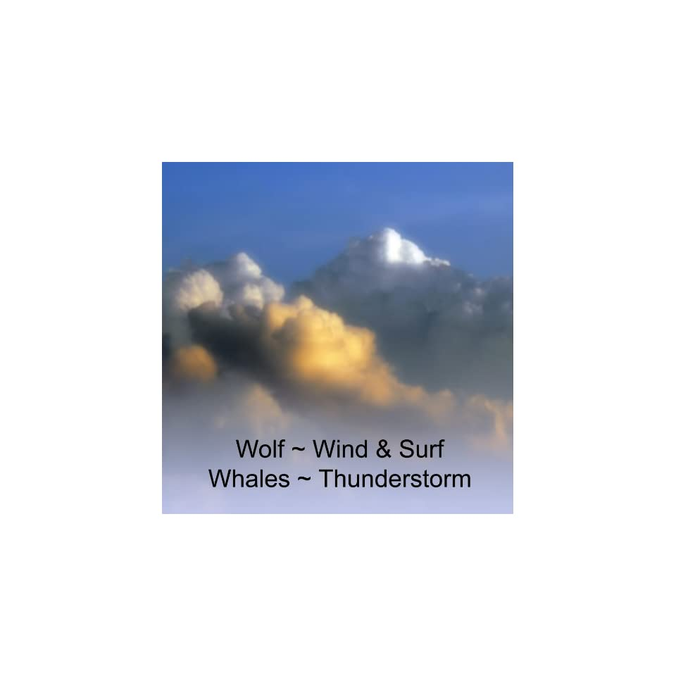 Nature Sounds Wolf Wind & Surf Whales Thunderstorm Soothing