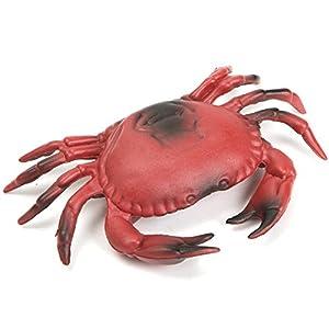Hard Plastic Crab