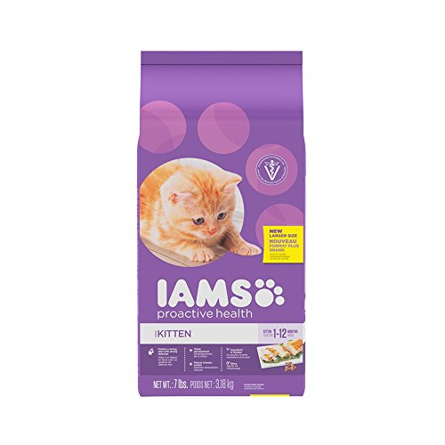 iams-proactive-health-kitten-dry-cat-food-7-pounds