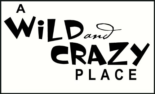 Wall Decor Plus More A Wild And Crazy Place Wall Sticker Saying for Nursery or Kid's Room Decor 23W x 12H - Black Black