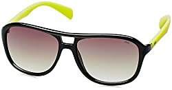 Fila Gradient Square Unisex Sunglasses - (SF8970K57Z42XSG|57|Green Gradient)