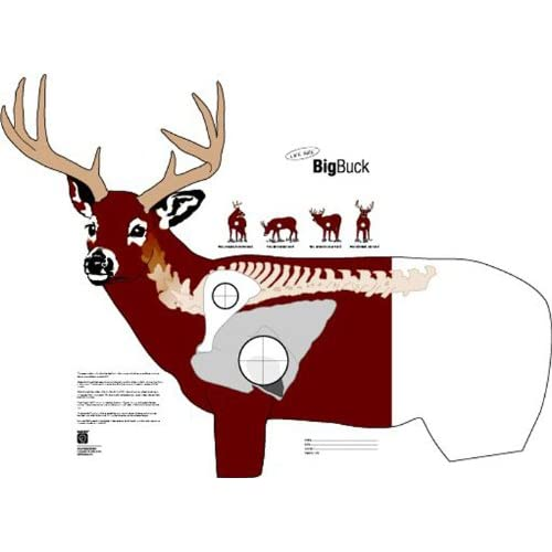 Drawings Showing Kill Zone Of Deer From Different Angles