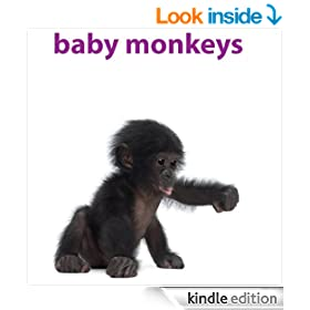 Baby Monkeys: Pictures and facts about all types of monkeys