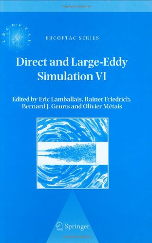 Direct and Large-Eddy Simulation VI: Proceedings of the Sixth International ERCOFTAC Workshop on Direct and Large-Eddy S
