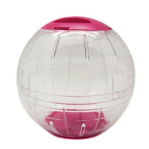 Rat Ball: Pet Supplies | eBay