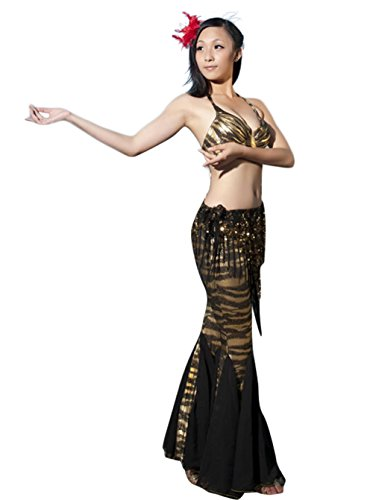 AveryDance Professional Belly Dance 2 Pieces Set Costume