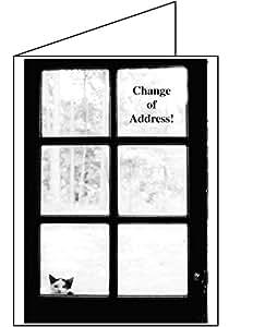 Amazoncom change of address greeting cards i39ve moved for Change of address note cards