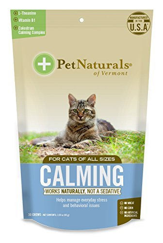 Calming-Supplements-for-Cats