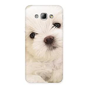 Stylish Cute Pup White Back Case Cover for Galaxy A8