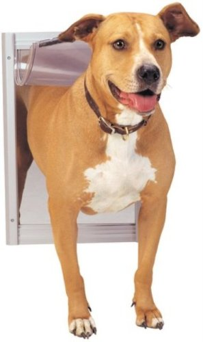 Buy Petsafe AK30-201-11 Classic Pet Door-Large Satin
