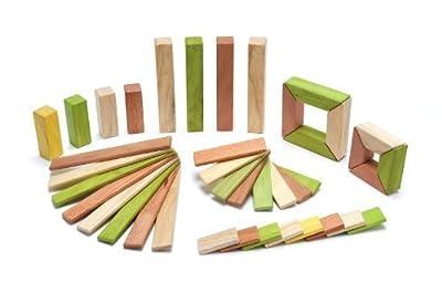 On Sale 40 Piece Magnetic Wooden Block Set Tegu Explorer, Jungle