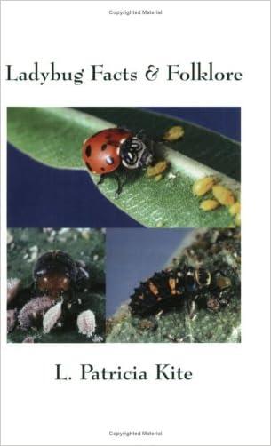 Ladybug Facts & Folklore