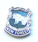 New Forest Pony Hampshire County Pin Badge