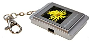 Silver 32 MB Digital Photo Frame Keyring 1.5 Inches - Stores 435 Images
