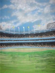 Amazon.com : 9'x10' Baseball Field Scenic Muslin