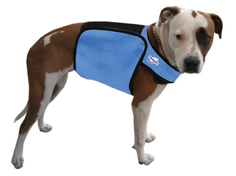 TechKewl Phase Change Cooling Dog Coat, Medium/Large, Blue