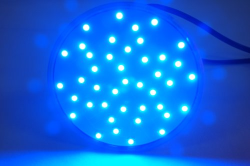 Eaglelight Blue Hydroponic Grow Light - Par38 Led Flood Light