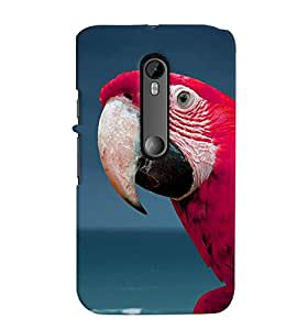 Fuson Premium Cute Macaw Printed Hard Plastic Back Case Cover for Motorola Moto G (3rd Gen)