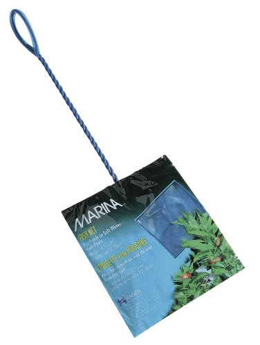 Marina 6-Inch Blue Fine Nylon Net with 12-Inch Handle