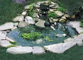 Winged Aquatics Bird Pond With 3 Tier Cascade Complete Pond Kits Patio Lawn