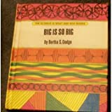 img - for Big is So Big book / textbook / text book