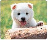 SANWA SUPPLY MPD-204P マウスパッド(日本犬)
