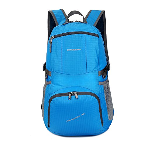 ORICSSON Durable Outdoor Lightweigt Travel Backpack Water Resistant Backpack Daypack with Extra Pockets in Strap 30L Blue (Vintage Metal Cooler compare prices)