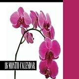 Orchids Mini Wall Calendar 2015: 16 Month Calendar