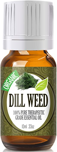 Dill Weed (Organic) 100% Pure, Best Therapeutic Grade Essential Oil - 10Ml