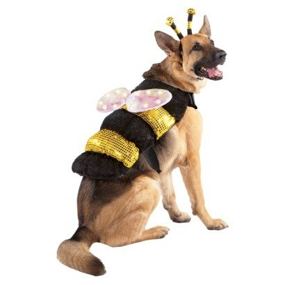 Led Bee With Light Up Wings Pet Costume - Size S