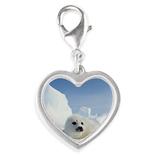 Silver Heart Charm Harp Seal (Wet Seal Bracelet compare prices)