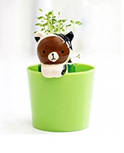 EZ Life DIY Grow your own Grass Table Plants White Milk Bear with Cup