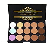 Eliann Cosmetics Professional 15 Color Concealer and Foundation Palette