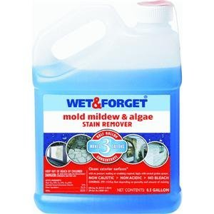 Wet and Forget 800033CA Wet & Forget Moss, Mold, And Mildew Control