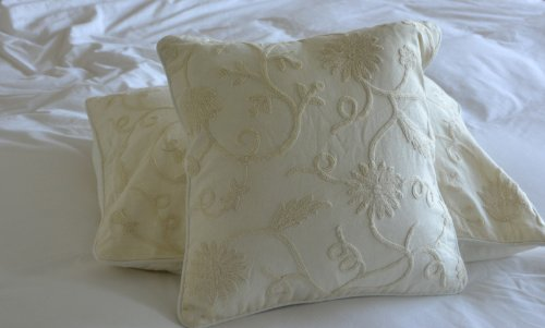 Crewel Pillow Floral Vine White on White Cotton Duck (16X16)