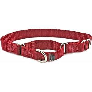 """Premier Collar (Petite, 3/8""""), Color Cranberry"""