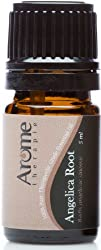 Angelica Root- 100 Certified Pure Therapeutic Grade Aromatherapy