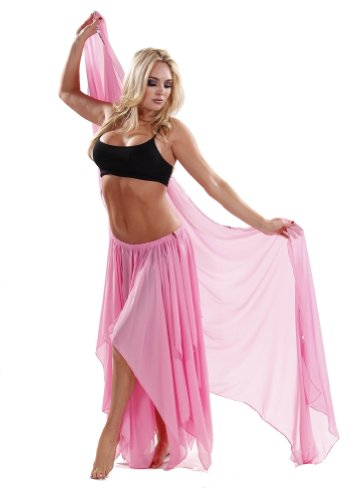 Miss Belly Dance Women's 13 Panel Skirt & Veil Costume Set