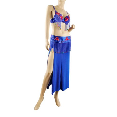 BellyLady Professional Belly Dance Costume, Fringe Bra, Waist Belt And Skirt