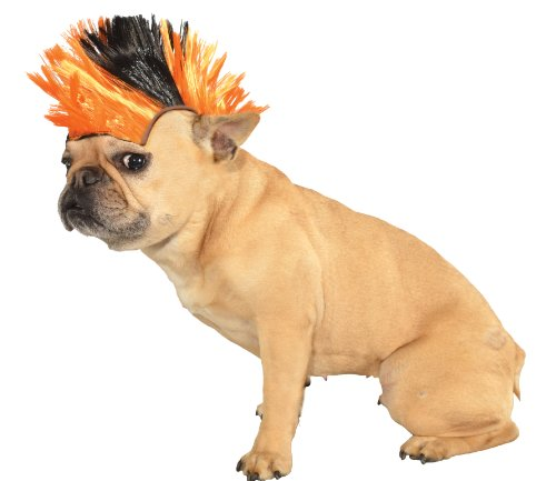 Rubies Costume Halloween Classics Collection Pet Costume, Small to Medium, Black and Orange Mohawk Wig