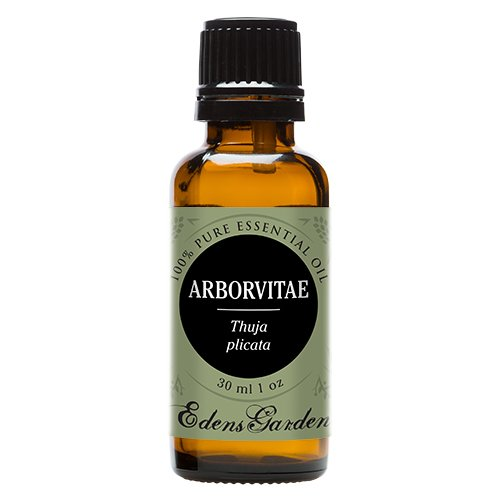 Arborvitae 100% Pure Therapeutic Grade Essential Oil by Edens Garden- 30 ml