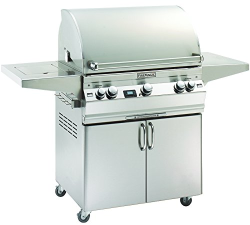 Aurora A660s2A1P62 Standing Digital LP Grill with Single Side Burner
