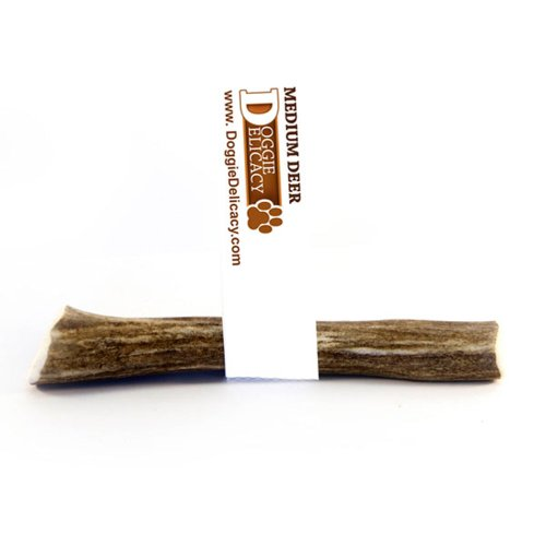 Doggie Delicacy All Natural Shed Premium Dog Treat and Chew, Deer Antler Original 4 to 5.5-Inch, Medium