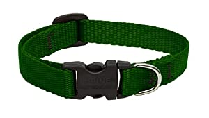 Lupine 1/2-Inch Green 10-16-Inch Adjustable Dog Collar for Small Dogs