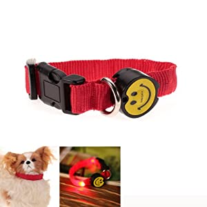LED Flashing Safety Pet Dog Collar Red Light - Size M - Worldwide