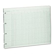 Wilson Jones Green Columnar Ruled Ledger Paper, Double Page Format, 20 Columns and 30 Lines per Page, 9.25 x 11.88 Inches, 100 Sheets per pack (WG10-20A)