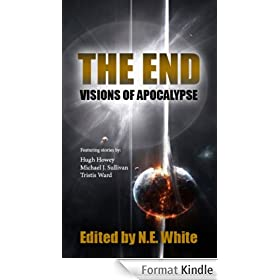 The End - Visions of Apocalypse (English Edition)